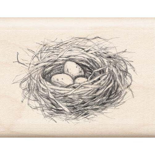 Nest_97104