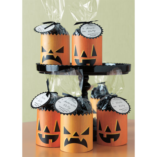Animal Masquerade Pumpkin Cello Treat Bags_48-20237