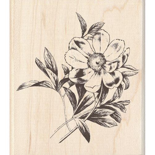 Large Flower_60-00635