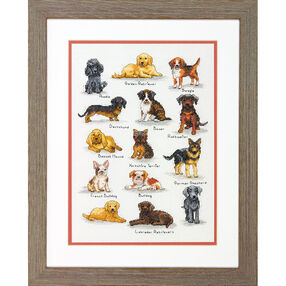 Dog Sampler, Counted Cross Stitch_70-35353