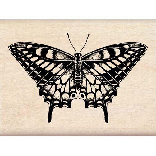 Butterfly_96660