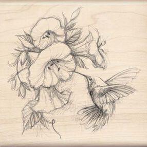 Hummingbird with Flowers_97077