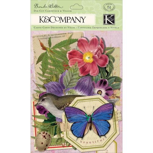 Brenda Walton Flora & Fauna Die-cut Cardstock and Vellum_30-599628