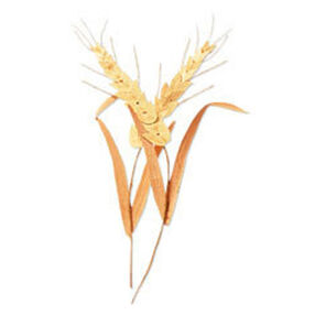 Wheat Stalks Embellishment_JJAB076B
