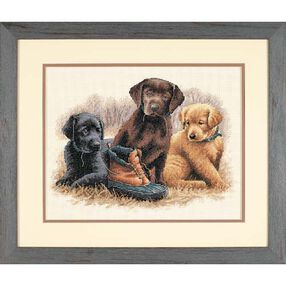 Chew Toy, Counted Cross Stitch_35188