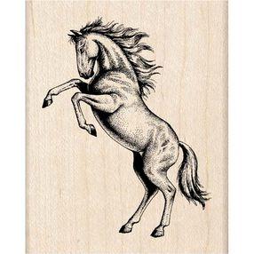 Rearing Stallion_96493