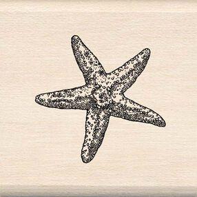 Starfish_94756