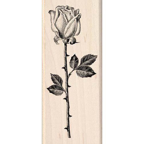 Single Stem Rose_94750