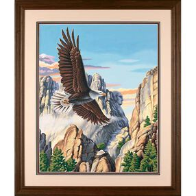 Soaring Eagle, Paint by Number_91301