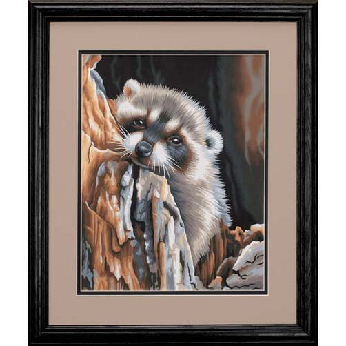Daydreaming Raccoon, Paint by Number_91418