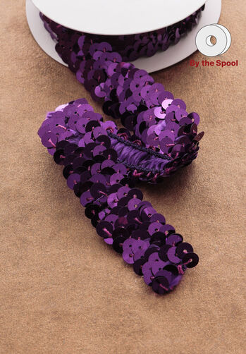 "4 ft. of 7/8"" Stretch Sequin Trim"