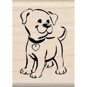 Puppy_98030