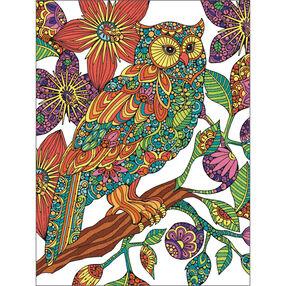 Flowering Owl, Pencil by Number_73-91540
