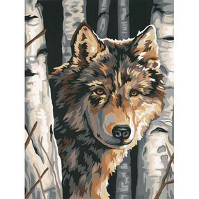 Wolf Among Birches, Paint by Number_91325