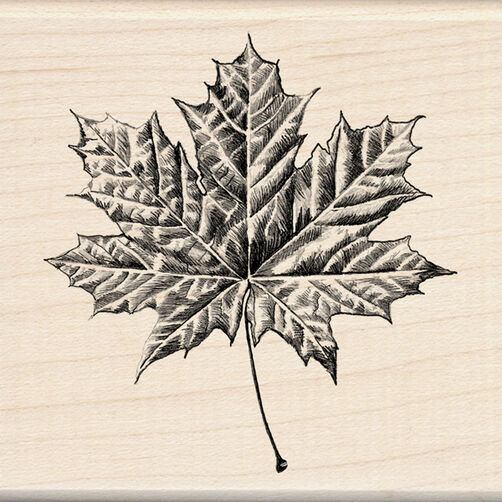 Maple Leaf_60-00302