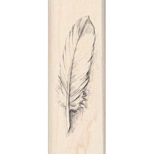 Feather_97119
