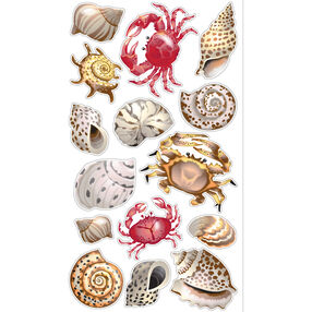 Shells And Crabs Classic Stickers_SPCLS311