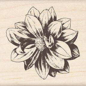 Medium Flower_60-00638