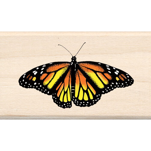 Monarch Butterfly_60-00088