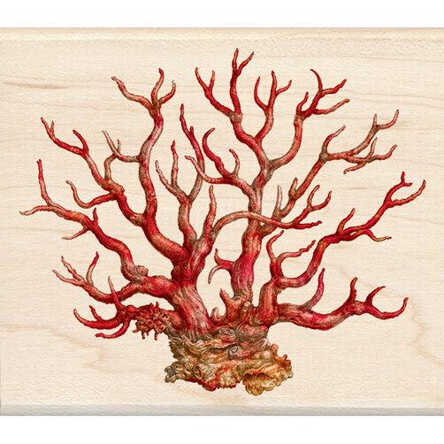 Coral Wood Stamp_60-00978