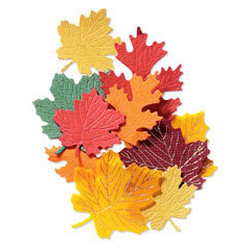 Maple Leaves Autumn Embellishment_JJAB067A