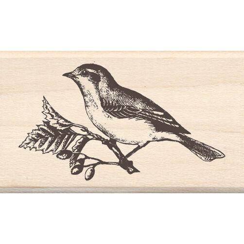 Bird_60-00637