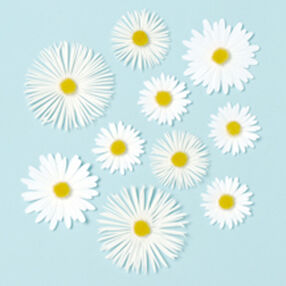 Daisy Glossary Dimensional Stickers_M353001