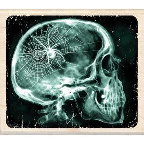 X-Ray Skull Wood Stamp_60-00804