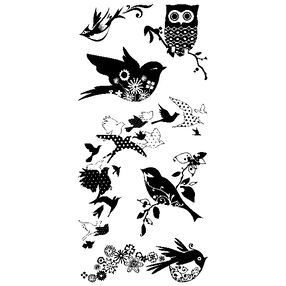 Birds Galore_97625