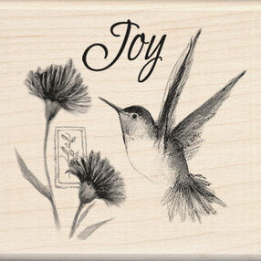 Hummingbird Joy_60-00671