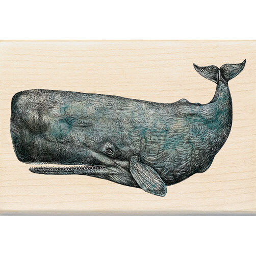 Sperm Whale Wood Stamp_60-00975