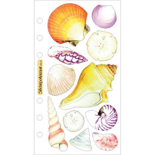 Vellum Seashells_SPVM14
