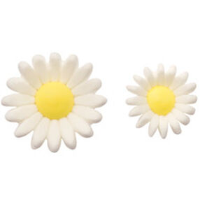 Pre-made Royal Icing Daisy
