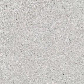 Silver Pearl Dust