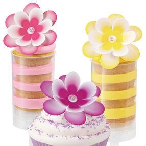 Multi-Color Flower Pix