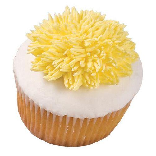 Shaggy Mum Extravaganza Cupcake