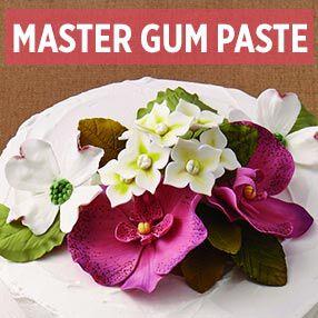 Master Gum Paste