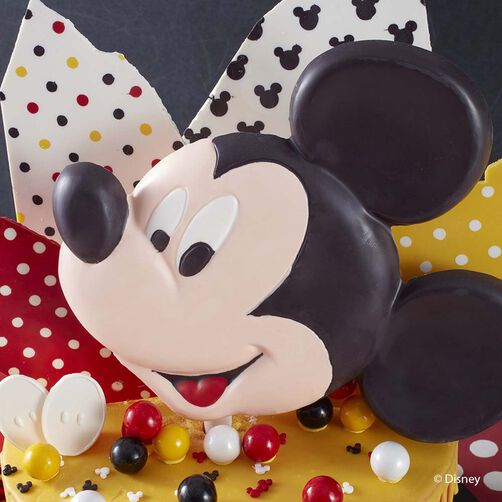 wilton mickey mouse cake pan instructions
