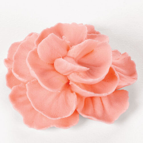 Pink buttercream carnation flower