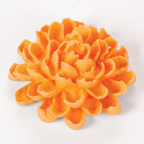 Chrysanthemum (Mum)