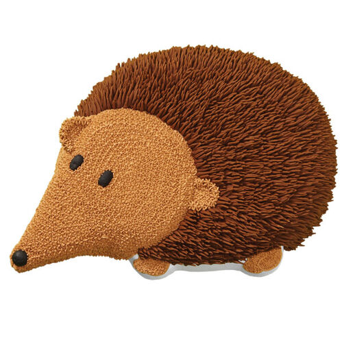 Hairy Hedgehog Cake