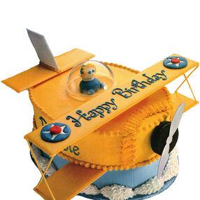 The Perfect Pilot Cake