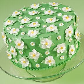 Resplendent Round Wild Rose Cake