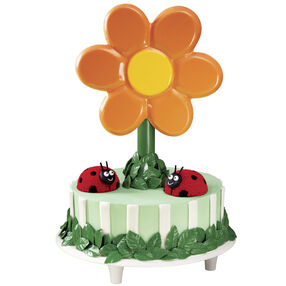 Bloom Where You're Planted Ladybug Cake