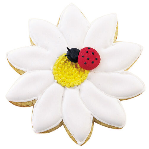 Ladybugged Cookie