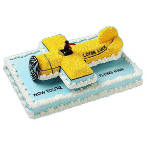 Perfect Landing Cake