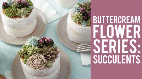 Buttercream Flower Series: Succulets
