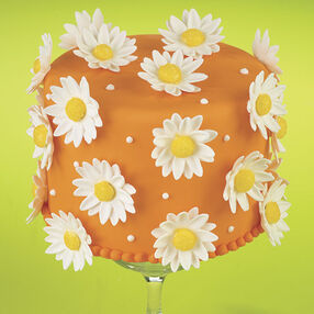 A Burst of Daisies Cake