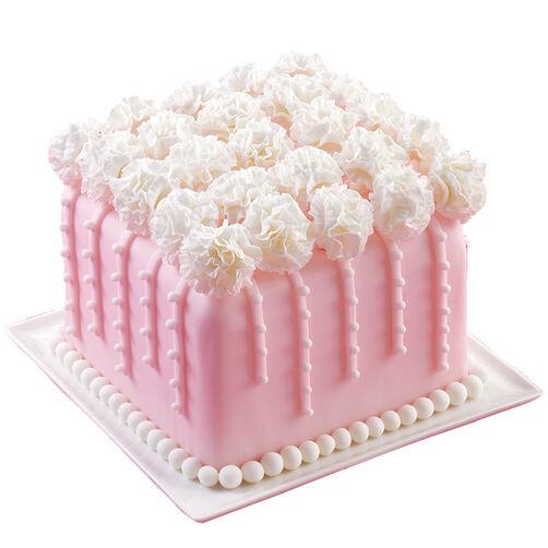 Carnation Presentation Cake
