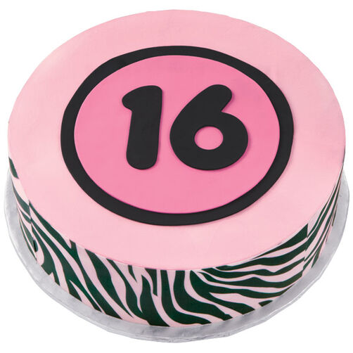 Just a Bit Wild at 16 Cake
